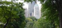 海外で初の同志社校友会懇親会!「The Doshisha Grand Reunion in New York 同志社ニューヨーク大懇親会」を開催します !